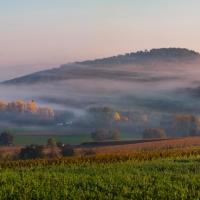 Alsazia: la strada dei vini, un campionario di sorprese