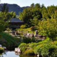 """A nord-ovest di Nîmes: """"Land Art"""" e """"Earth Works"""" in un canneto di bambù"""